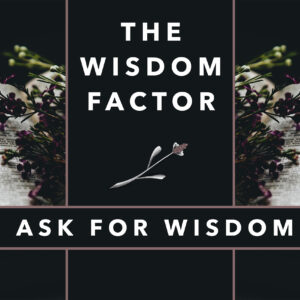 The Wisdom Factor_Part 1_Thumb